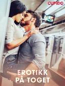 Erotikk på toget