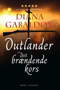 Det brændende kors (e-bog) af Diana G