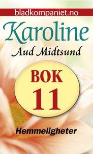 Hemmeligheter (ebok) av Aud Midtsund
