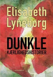 Dunkle kærlighedshistorier (e-bog) af