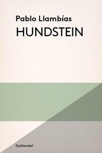 Hundstein (e-bog) af Pablo Llambías