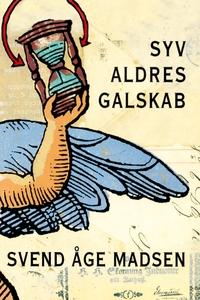 Syv aldres galskab (e-bog) af Svend Å