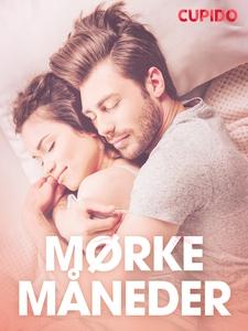 Mørke måneder - erotiske noveller (ebok) av C