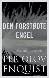 Den forstødte engel (e-bog) af P.O. E