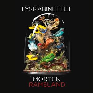 Lyskabinettet (lydbog) af Morten Rams