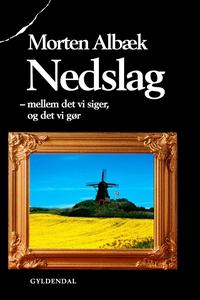 Nedslag (e-bog) af Morten Albæk