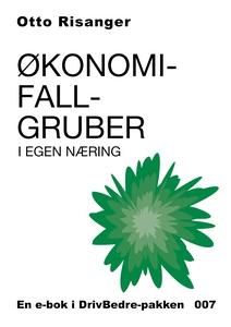 Økonomifallgruber i eget næring (ebok) av Ott