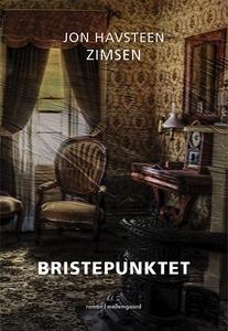 Bristepunktet (e-bog) af Jon Havsteen