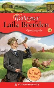 Gjensynsglede (ebok) av Laila Brenden