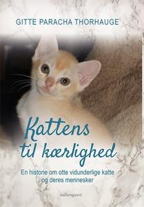 Kattens til kærlighed (e-bog) af Gitt