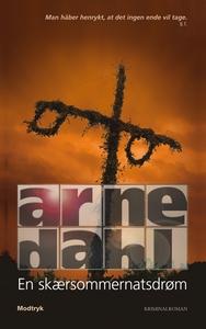 En skærsommernatsdrøm (e-bog) af Arne