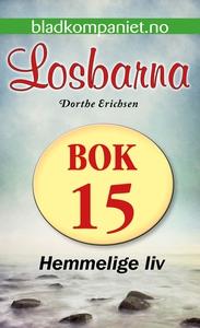 Hemmelige liv (ebok) av Dorthe Erichsen