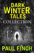 Dark Winter Tales: a collection of horror short stories