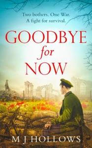 Goodbye for Now (ebok) av M.J. Hollows