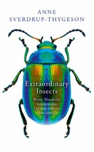 Extraordinary Insects (ebok) av Anne Sverdrup