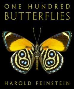 One Hundred Butterflies (ebok) av Ukjent