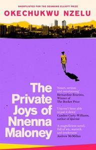 The Private Joys of Nnenna Maloney (ebok) av