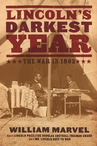 Lincoln's Darkest Year (e-bok) av William Marve