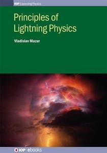 Principles of Lightning Physics (e-bok) av Vlad