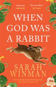 When God was a Rabbit (ebok) av Sarah Winman