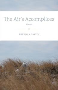 The Air's Accomplices (e-bok) av Brendan Galvin