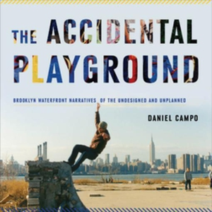 The Accidental Playground (e-bok) av Daniel Cam