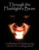 Through the Flashlight's Beam
