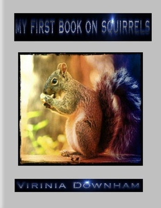 My First Book on Squirrels (e-bok) av Virinia D