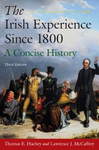 The Irish Experience Since 1800 (e-bok) av Thom