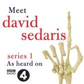 Meet David Sedaris: Series One