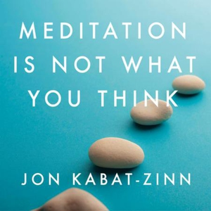 Meditation is Not What You Think (lydbok) av