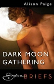 Dark moon gathering
