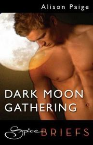 Dark moon gathering (ebok) av Alison Paige