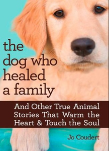 The Dog Who Healed a Family (ebok) av Jo Coud