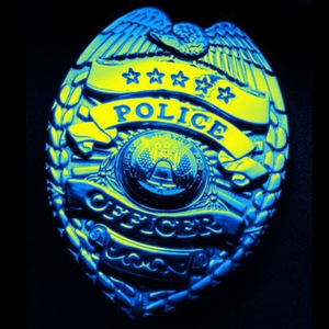 The Cop (ebok) av R.J. Ellory