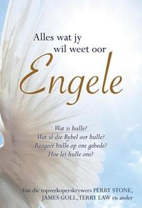 Alles wat jy wil weet oor engele (eBoek) (e-bok