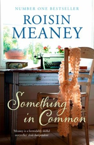 Something in Common (ebok) av Roisin Meaney