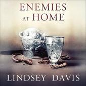 Enemies at Home