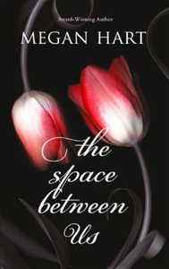 The Space Between Us (ebok) av Megan Hart