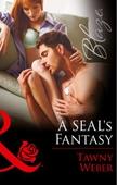 A SEAL's Fantasy