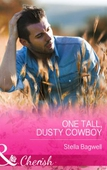 One Tall, Dusty Cowboy