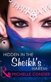 Hidden In The Sheikh's Harem