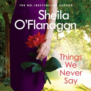 Things We Never Say (lydbok) av Sheila O'Flan