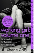 Working Girl: Volume One (A sexy serial, perfect for fans of Calendar Girl)