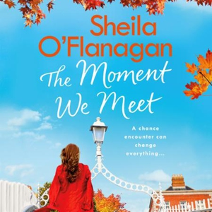 The Moment We Meet (lydbok) av Sheila O'Flana