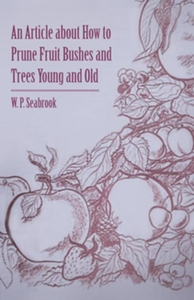 An Article about How to Prune Fruit Bushes and