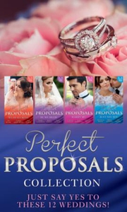 Perfect proposals collection (ebok) av Ally B
