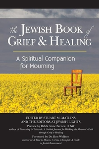 The Jewish Book of Grief and Healing (e-bok) av