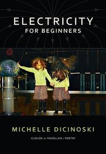 Electricity for Beginners (e-bok) av Michelle D
