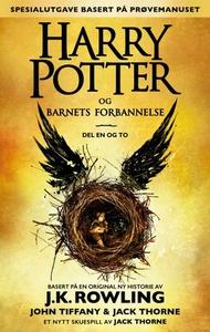 Harry Potter og barnets forbannelse (ebok) av